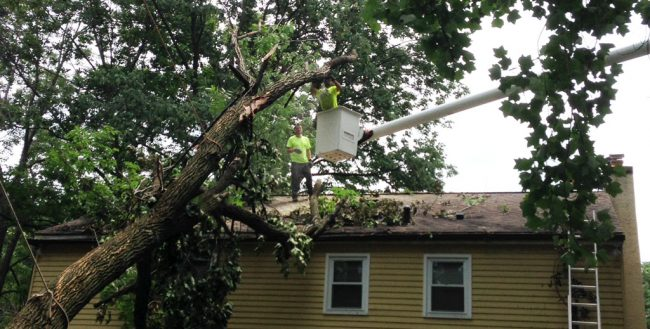 Our emergency tree removal service at work when a tree fell on a house