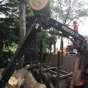 using a crane to load logs onto a trailer