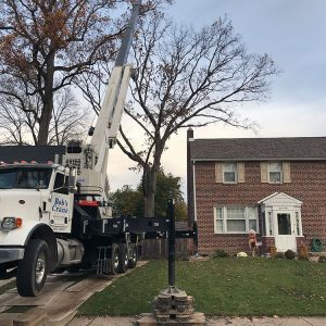 drexel hill tree removal with crane in driveway