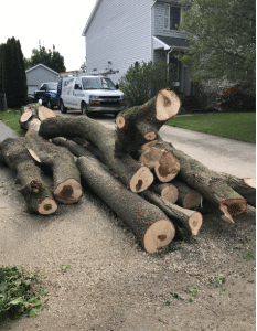 Manageable pieces of wood