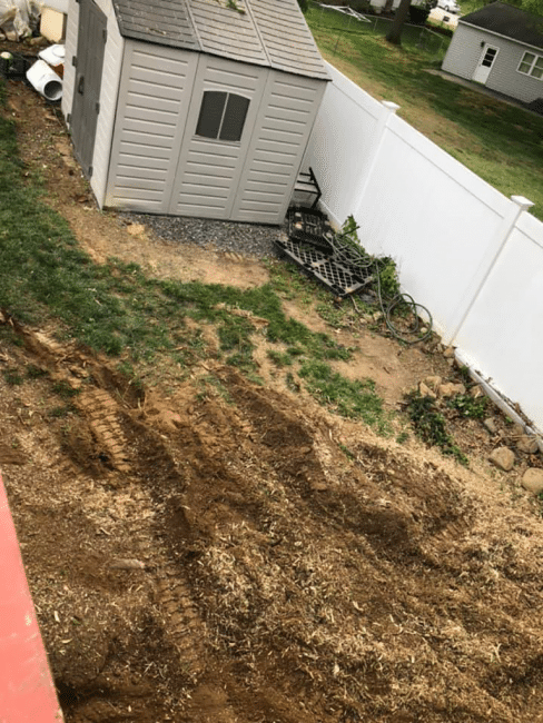 Dirt patch and shed without a tree
